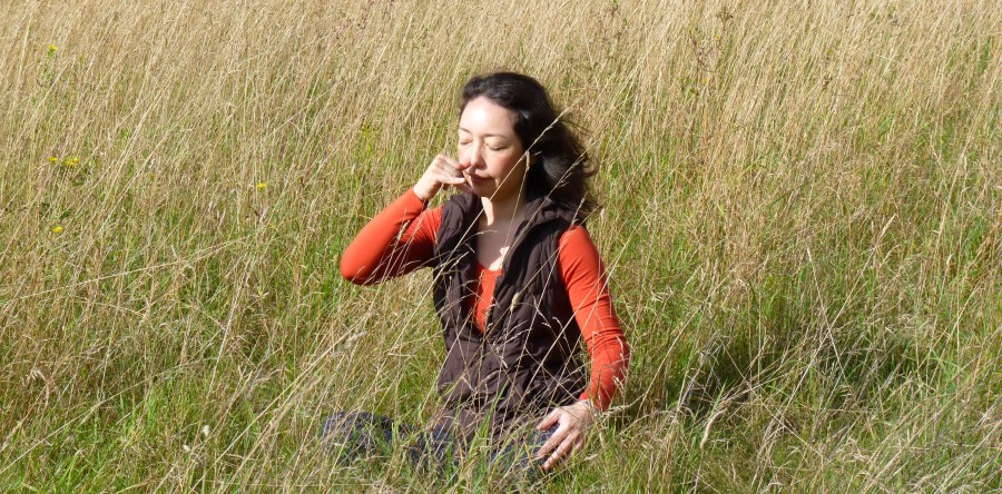 Pranayama – making light of mule work